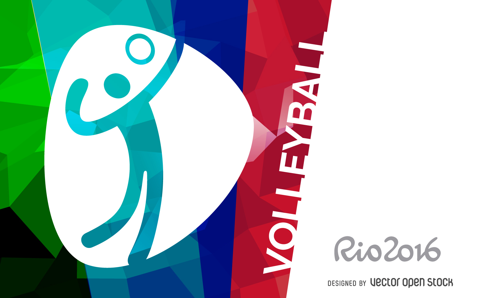 rio-2016-volleyball-banner